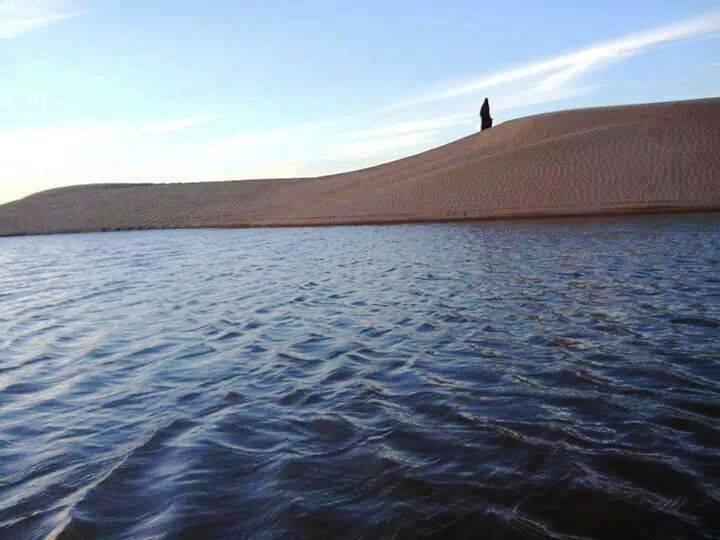 الماء في الصحراء