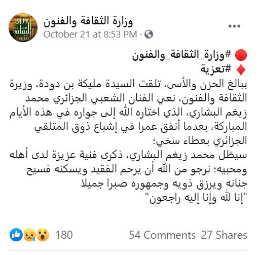محمد زيغم البشاري
