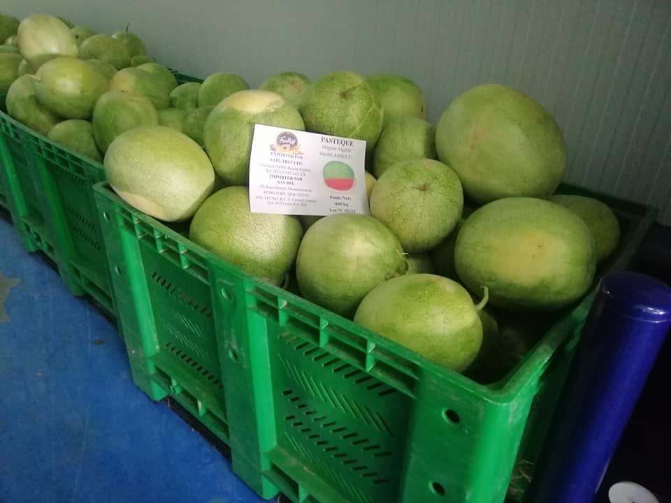 الوادي,فرنسا,تصدير البطيخ
